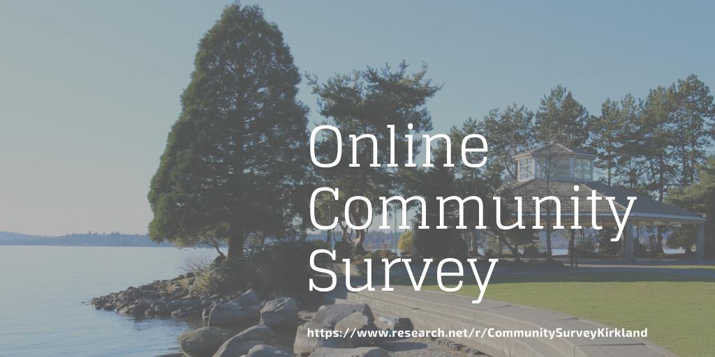Online community survey