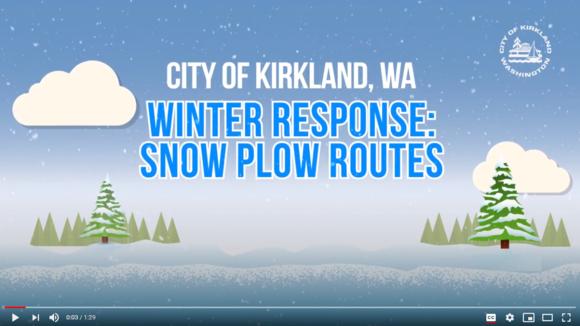 Winter Snow Response