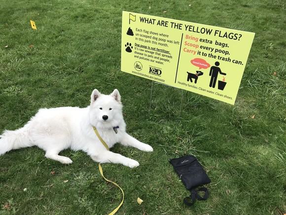 Pet waste outreach