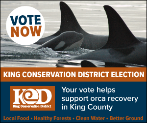 King Conservation District election