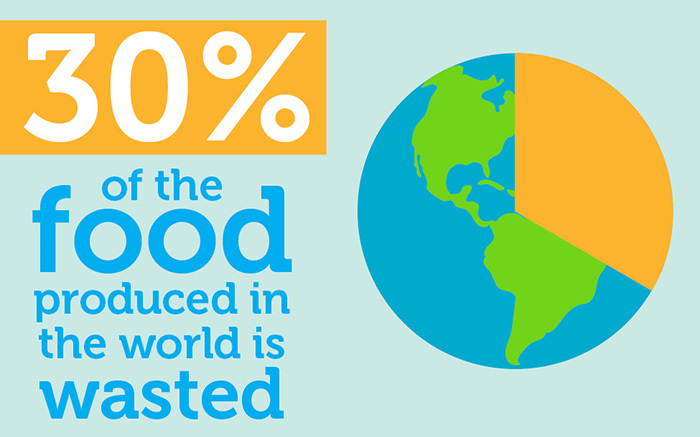 30% of Food Goes to Waste