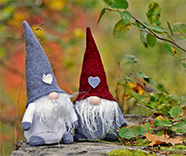 Create your Gnomes!