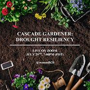 Drought Resilient Garden