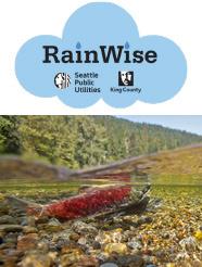 RainWise and Salmon See-son Webinar