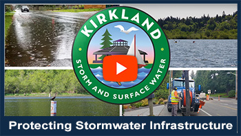 Protecting Stormwater Infrastructure