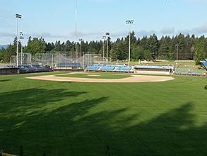 Lobe Field