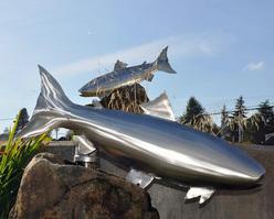 Ququad Salmon