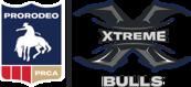 Xtreme Bulls - Fair