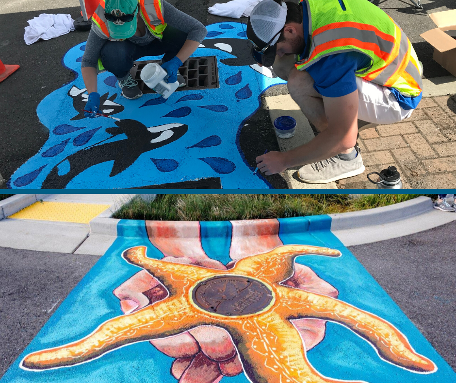A photo of two storm drain art murals of Orcas and starfish.