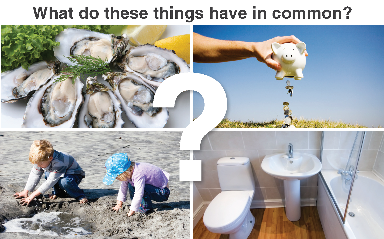 Four pictures of shellfish, a piggybank, children playing in the beach and a bathroom