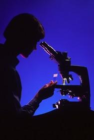 microscope2