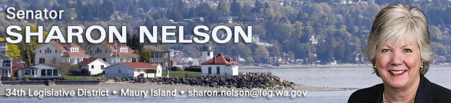 Nelson banner 2017