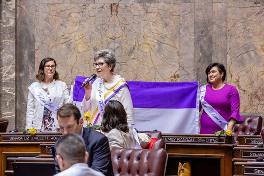 darneille lovelett randall suffrage flag