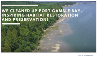 Port Gamble Clean-Up