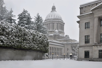 Capitol in the snow
