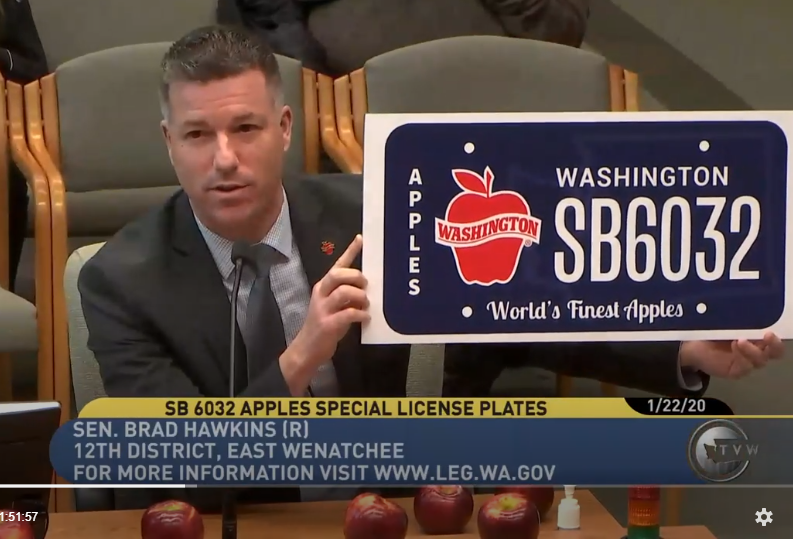 TVW screenshot of Sen. Hawkins testifying on apple license plate bill.