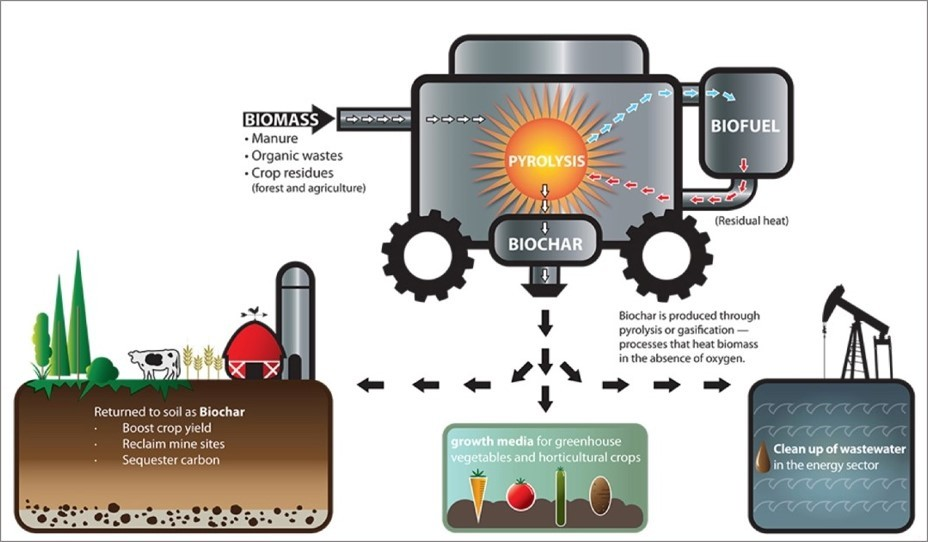 Biochar process graphic