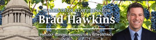 Vineyard banner for e-newsletters