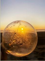 Lightbulb Sunset, by L.B. King
