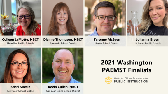 PAEMST Finalists