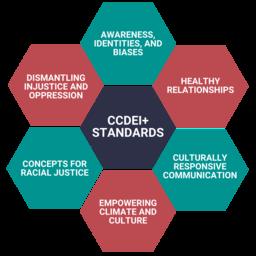 ccdei standards