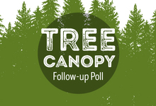Tree Canopy Poll