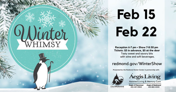 Winter Whimsy Comedy Series
