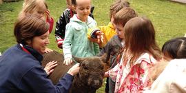 Children petting lamb