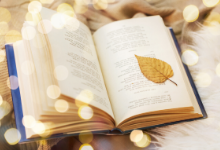 Picture of book laid on grass with a leaf on it