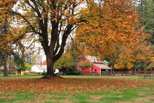 Farrel-McWhirter Farm