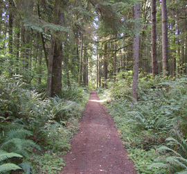 Redmond Parks and Trails