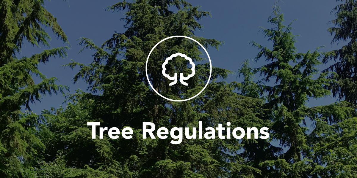 Tree Regulations