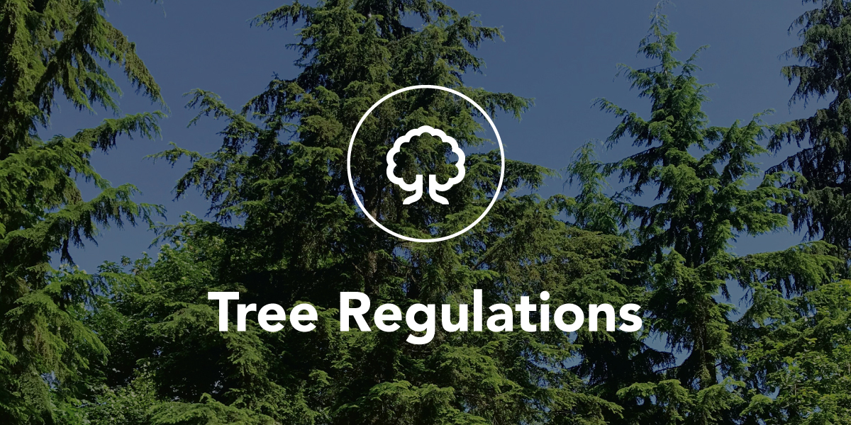 Tree Regulations