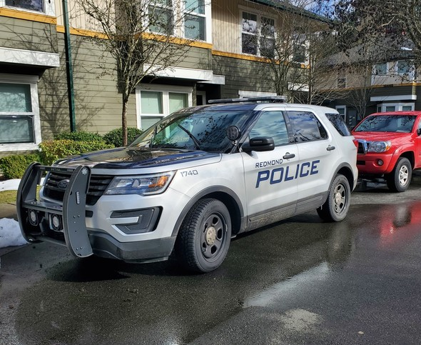 RPD patrol car Feb 2021