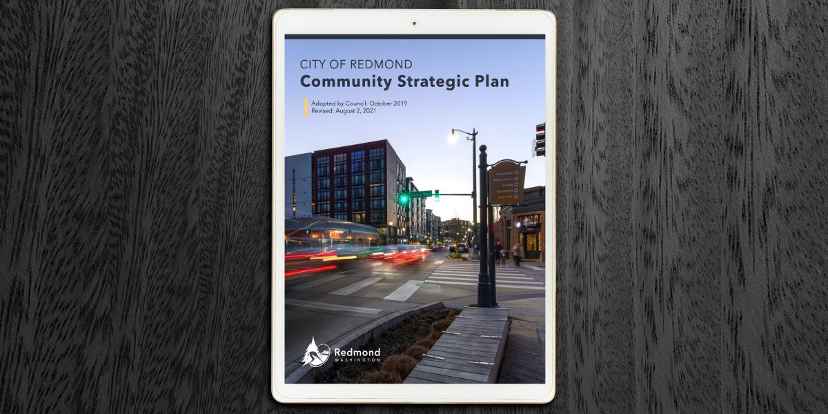 Community Strategic Plan