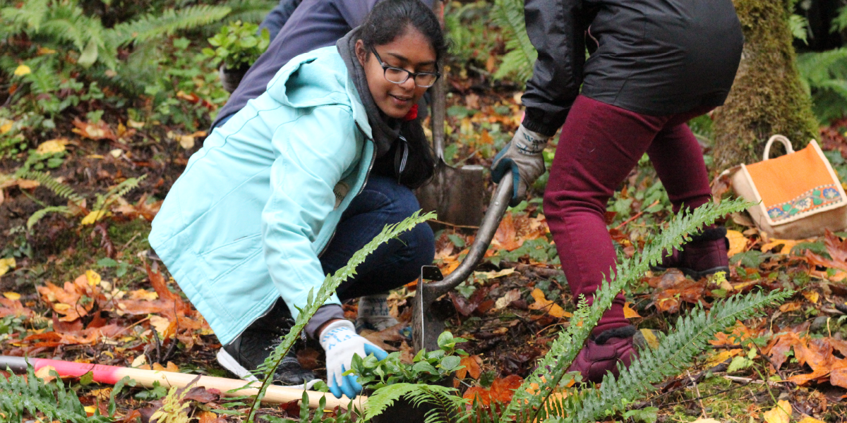 Plant Trees on Green Redmond Day