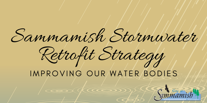 Stormwater Retrofit Strategy