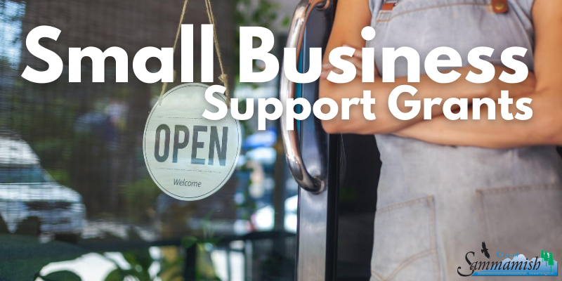 COVID-19 Small Business support grants