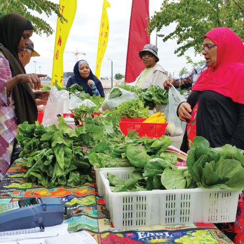 4 people at outdoor market, standing at a table full of produce