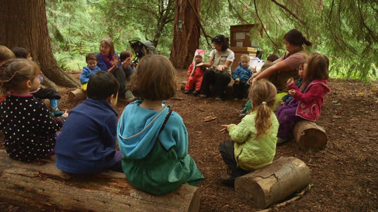 Fiddleheads Outdoor Preschool