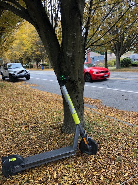 Link scooter among fall leaves on the sidewalk in West Seattle.