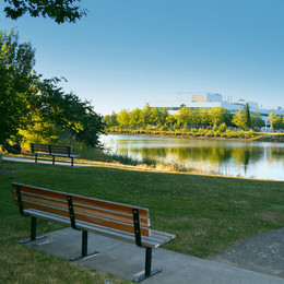 A park bench overlooks a pathway leading down to a river with foliage and buildings in the distance.