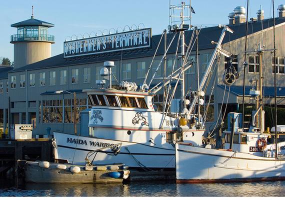 Fisher Terminal
