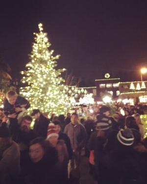 Tree Lighting in Bothell