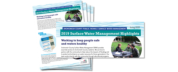 Surface Water Management (SWM) 2019 Highlights Report