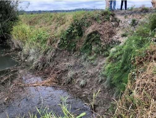 Flood Damage - Ebey Slough Levee