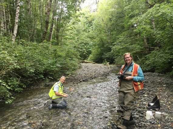 State of Our Waters - SWM staff survey stream habitat