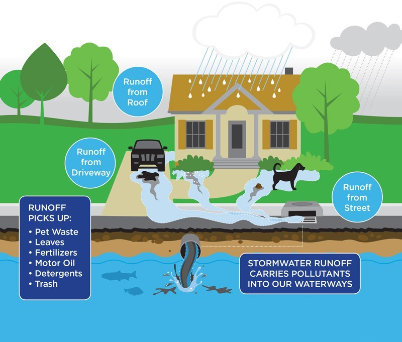Stormwater runoff carries pollutants into our waterways