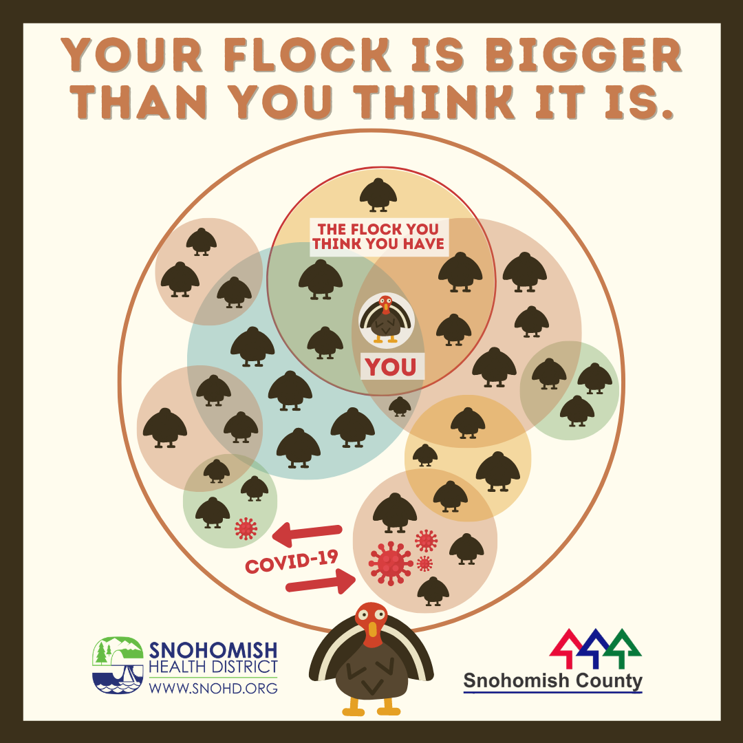 screenshot of social media video keep your flock safe and small