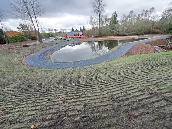 Meadow Creek Park detention pond after improvements.